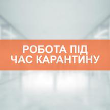VES_karantin